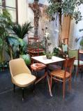 Bologna - Muzeul de Istorie a Oraşului - Cafenea