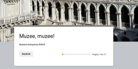 Chestionar_Muzee muzee