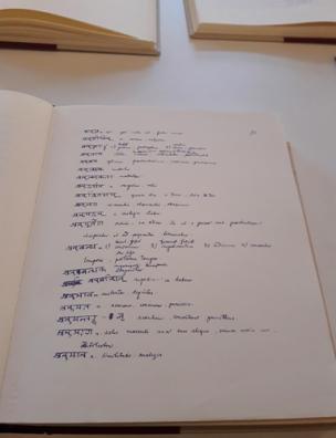Eminescu_sanscrita-pagina_Muzeul-Literaturii-Bucuresti