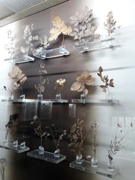Plante_Plevna_Museum